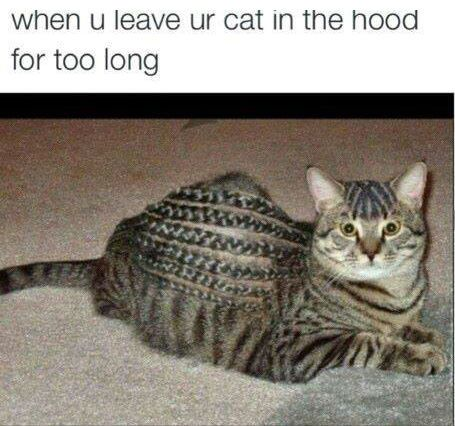 Hood Meme hood meme funny pictures, quotes, memes, funny images, funny