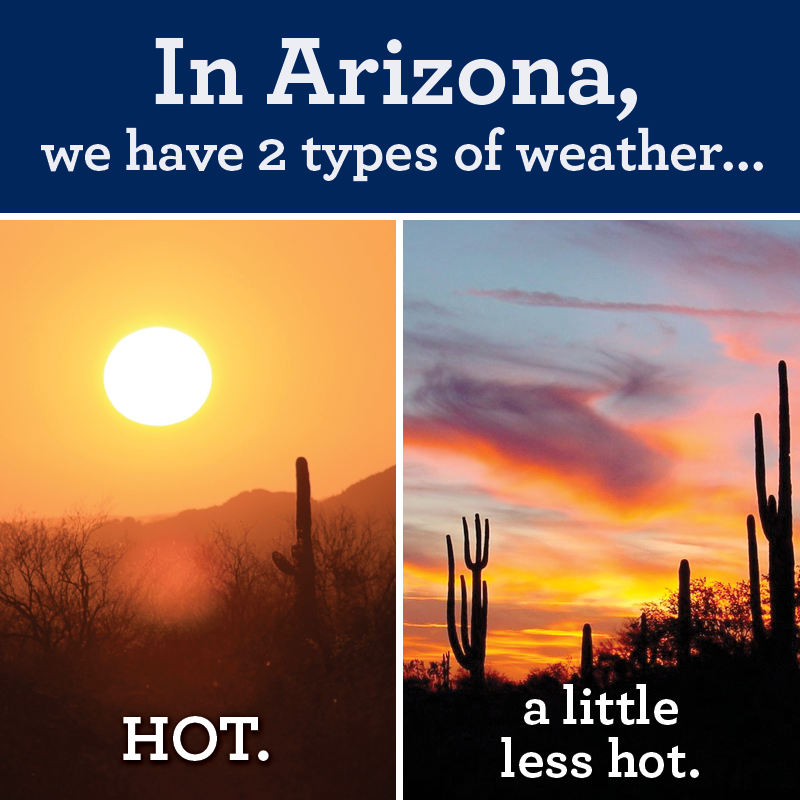 In Arizona Funny Pictures Quotes Memes Funny Images Funny Jokes Funny P Os