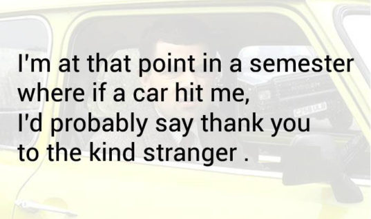 Thank the stranger for hitting me