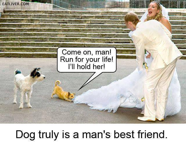 Dog is a Man's best Friend | Funny Pictures, Quotes, Memes, Funny