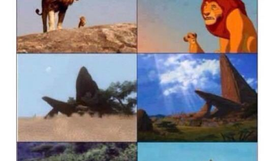 Lion King was real!!