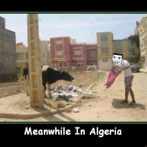 Meanwhile in Algeria