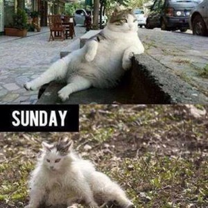Sundays be like..