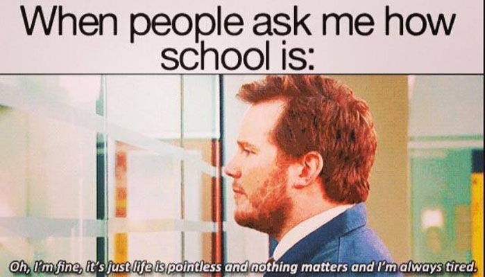 Funny Meme Quotes About School : How school is funny pictures quotes memes