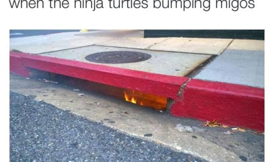 Ninja Turtles Hideout