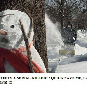 Save the Snowman