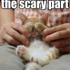 Scary Part