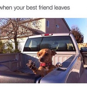 When best friend leaves