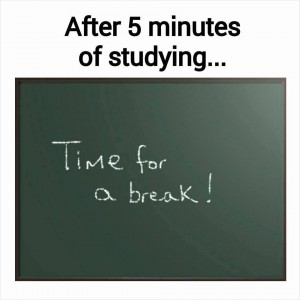 After 5 minutes of study