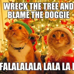 Cat Wrecks Christmas tree