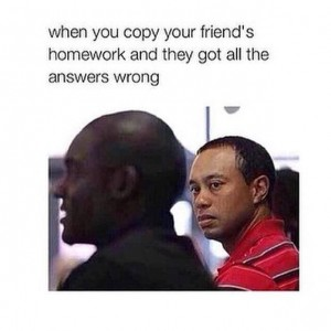 Copying an idiot friend