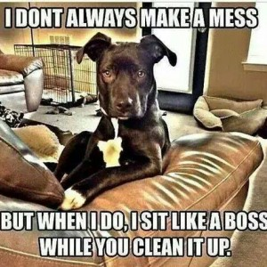 Don't always make a mess