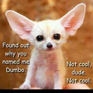 Named me Dumbo