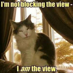 Not blocking the view