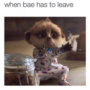 When Bae has to leave