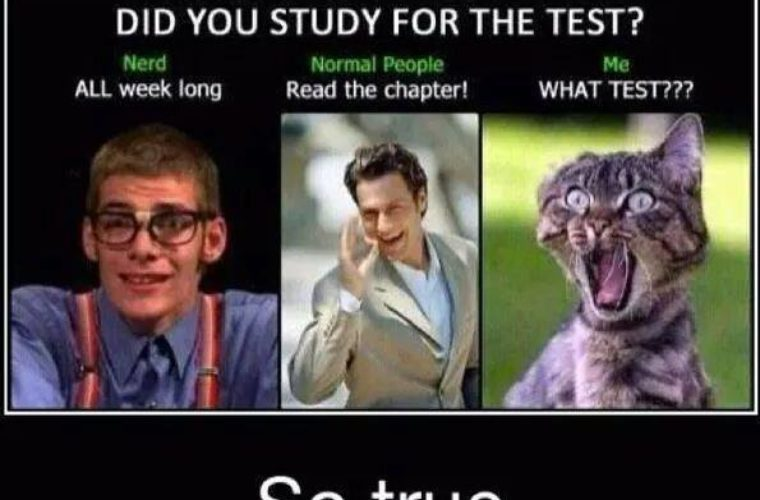 Did you study for the test