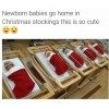 New Born Babies in Christmas vacations