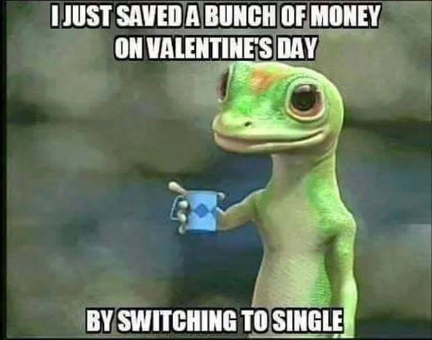 Save Money On Valentine S Day Funny Pictures Quotes Memes Funny