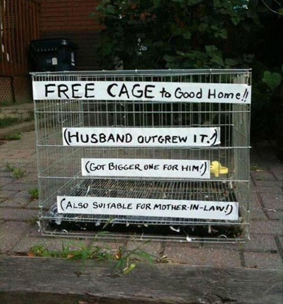 Free cage to good home