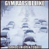 Gym Rats be like..