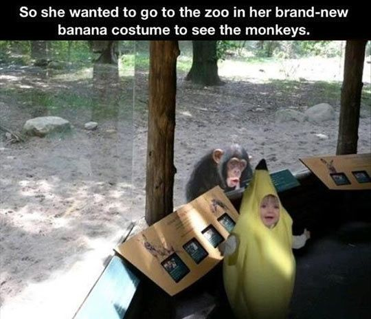 Banana Costume Funny Pictures Quotes Memes Funny Images Funny