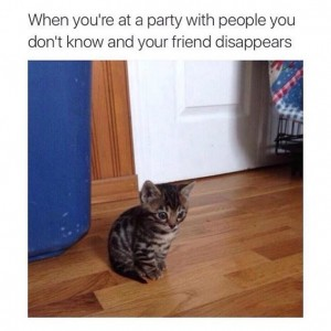 Lost At Party