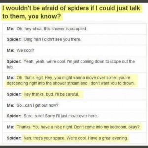 Scarry Spiders