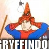 Spiderman Gryffindor