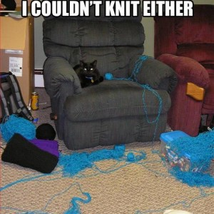 Couldnt Knit