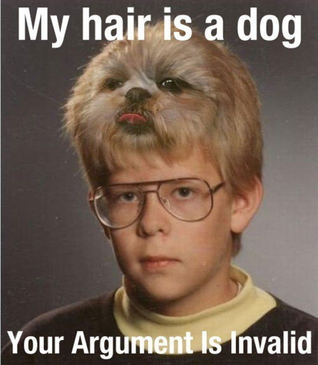 Hair Dog Funny Pictures Quotes Memes Funny Images Funny Jokes