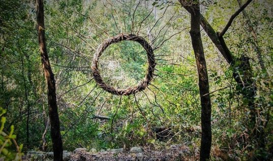 Spencer Byles Created Amazing Forest Sculptures