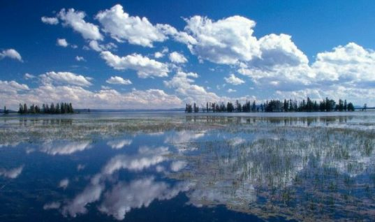 Yellowstone River Mirror