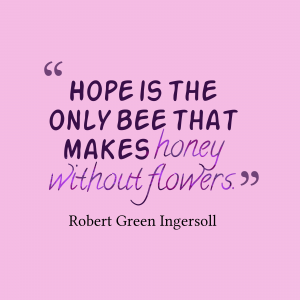 Honey Without Flowers