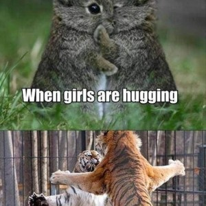 Hugging Friends