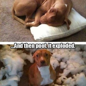 It Exploded