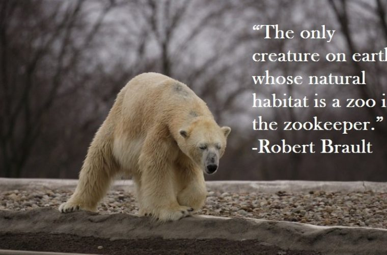 Funny Zoo Memes : The zookeeper funny pictures quotes memes funny images funny