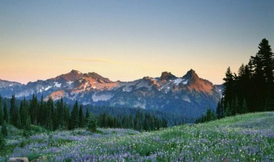 The Tatoosh Range, Mount Rainier National Park, Washington