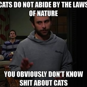 Abide By The Laws Of Nature