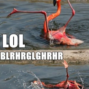 Drunk Pink Flamingo