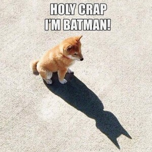 I Am Batman Little Puppy
