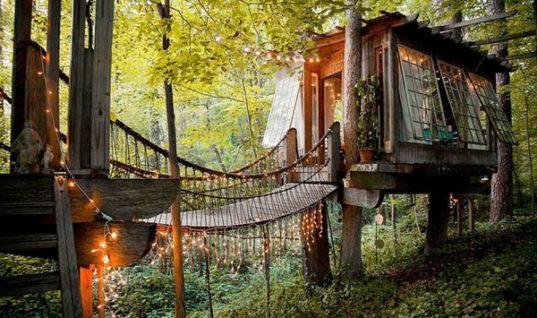 Peter Bahouth's Atlanta Treehouse
