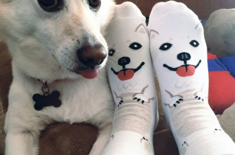 Big Eyes Puppy Socks