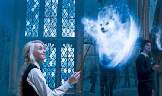 Harry Potter Spell Luna