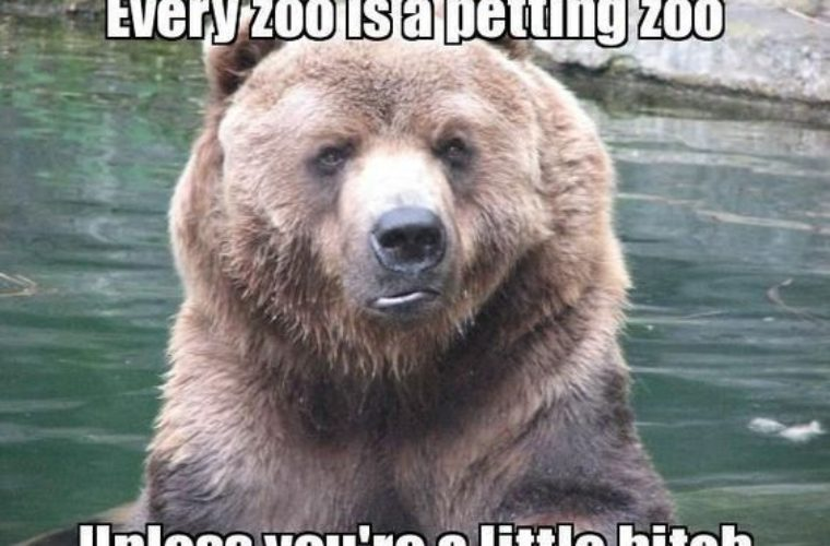 Funny Zoo Memes : Little bitch petting zoo funny pictures quotes memes funny