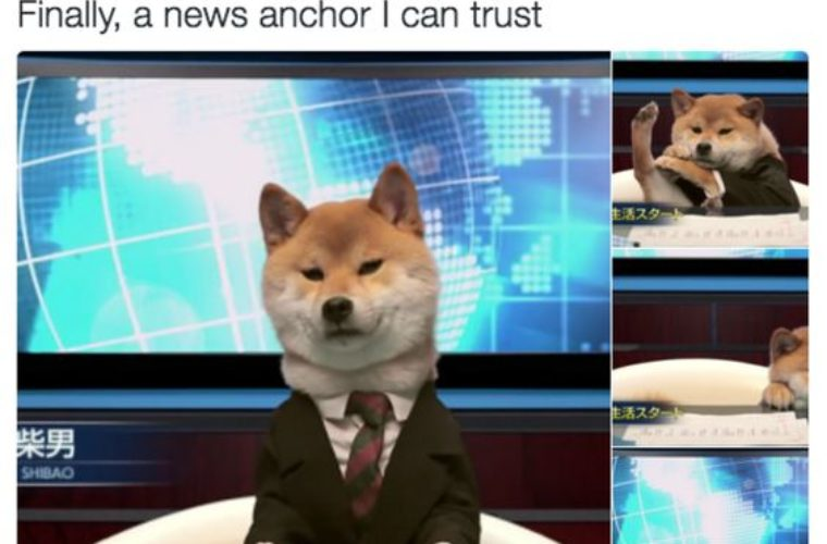 New Anchor I Can Trust