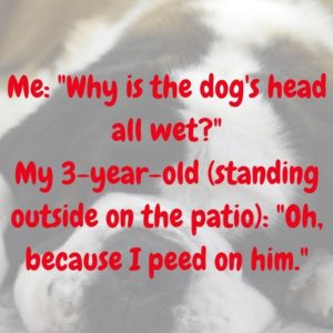 Pee On The Dog