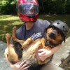 Riding With Your Dog
