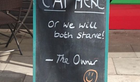 We Will Both Starve