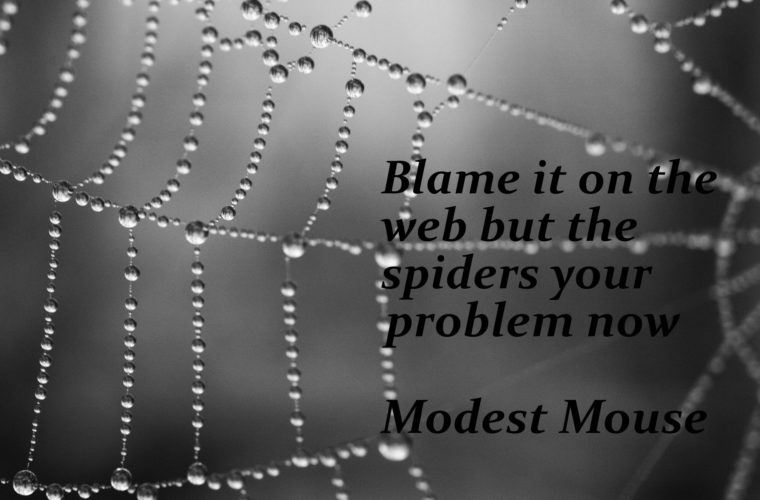 Blame It On The Web