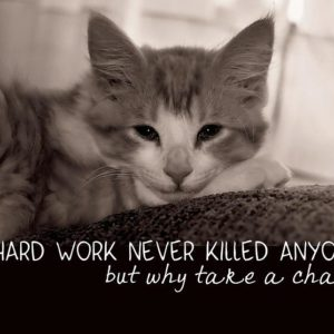 Hard Work Never Killed